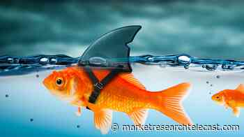 What are the most dangerous animals in Argentina - Market Research Telecast