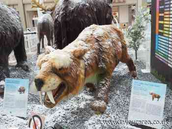 Families in Camberley enjoy visit from pre-historic animals in shopping centre over summer - In Your Area