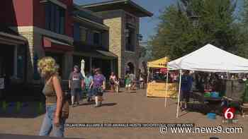 Oklahoma Alliance For Animals Hosts 'Woofstock 2021' In Jenks - news9.com KWTV