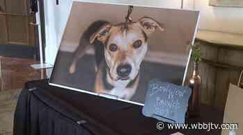 Bow Wow Brunch raises money for local animals - WBBJ TV - WBBJ-TV