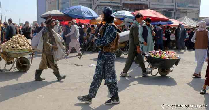 Borse di studio umanitarie per gli studenti bloccati in Afghanistan: i progetti dell'Università di Padova e della Sapienza