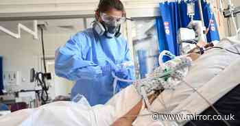 Covid deaths fall by 50% in a month as UK records 29,612 new infections