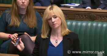 Labour MP Rosie Duffield to miss conference over online abuse in trans rights row