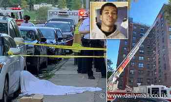 NYC teen jumps to his death after 'setting apartment kitchen on fire'