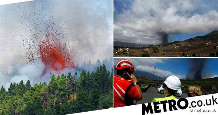 Volcano erupts on Spanish Canary Island forcing 1,000 to flee