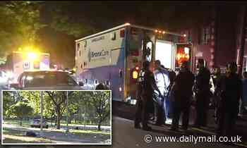 Bronx park shooting kills 22-year-old man and injures three victims - including an 11-year-old boy