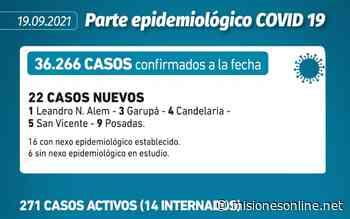 Coronavirus: en Misiones se notificaron 22 nuevos contagios en las últimas 24 horas - Misiones OnLine