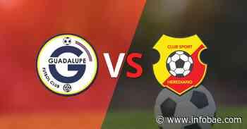 Por la fecha 12 se enfrentarán Guadalupe FC y Herediano - infobae