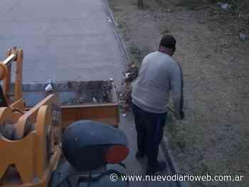 Servicios Públicos: Limpieza y poda en diversos barrios de la ciudad - Nuevo Diario de Santiago del Estero