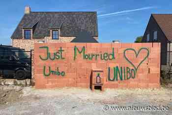 Van je collega's moet je het hebben: bruidspaar ziet op trouwfeest hoe ze steen voor steen muur voor nieuw huis bouwen