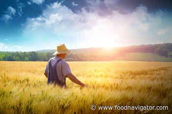 'We must go further'... Nestlé invests a billion euros in regenerative agricultural push