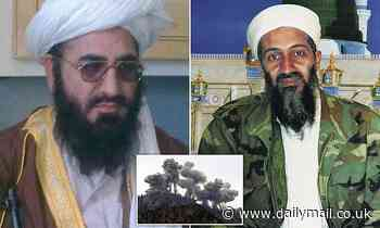 Mastermind behind Osama bin Laden's escape from US bombing of Tora Bora is back in charge of Taliban