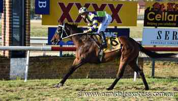 Racing was back in Armidale on Sunday - Armidale Express