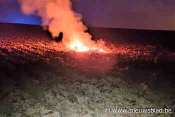 Brand op veld laait weer op