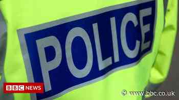 Pedestrian dies after being hit by police van in Motherwell