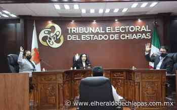 Confirman Sala Xalapa elección de 60 municipios de Chiapas - El Heraldo de Chiapas