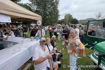 Retromarkt in Klein Parksken lokt honderden mensen - Het Nieuwsblad