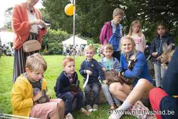 Kindercarrousel strijkt neer in tuin Club de B - Het Nieuwsblad