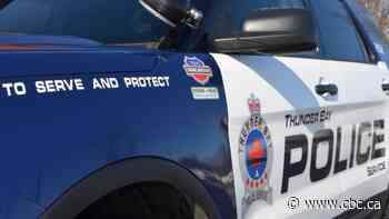 Thunder Bay man charged after senior citizen assaulted
