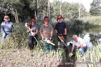 """Reddingsactie vrijwilligers Natuurpunt in natuurgebied Kooldries: """"Kamsalamander met uitsterven bedreigd"""""""