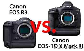 Canon EOS R3 und EOS-1D X Mark III im Vergleich - dkamera.de - Digitalkamera Nachrichten