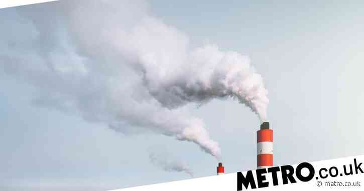 How is carbon dioxide produced and what is it used for?