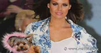 Meet the real love of Jess Wright's life - her Yorkshire Terrier Bella