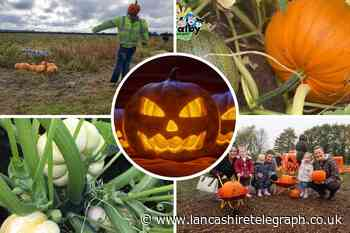 10 North West places to go pumpkin picking this Halloween