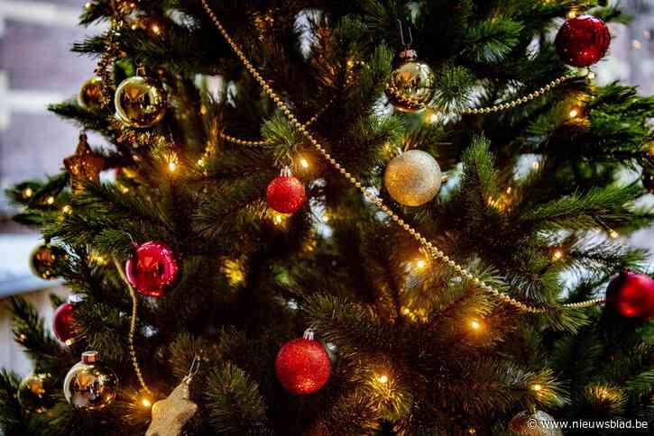 Nog maar september, en Natalina uit Nieuwerkerken heeft haar kersthuis al klaar