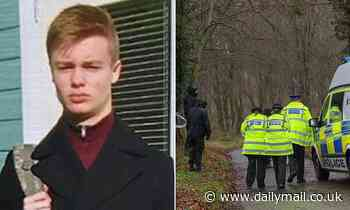 Grammar school student, 16, who took his own life in woodland was egged on by a social media group