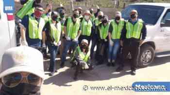Realizan la tercera jornada de limpieza en el Valle de Guadalupe - El Mexicano Gran Diario Regional