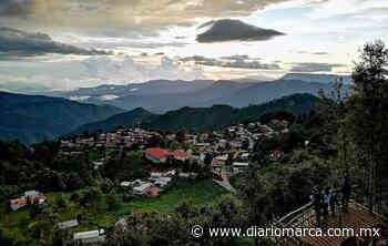 San José del Pacífico, fantástico lugar enclavado en la Sierra Sur - Diario Marca de Oaxaca