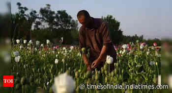 Taliban takeover forcing heroin surge into India?