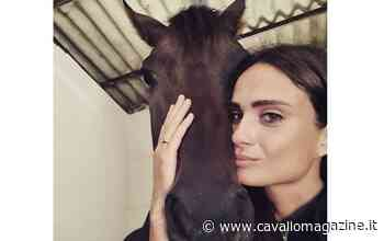 Legnano: Marracash, il cavallo di Zedde, sta bene - CavalloMagazine