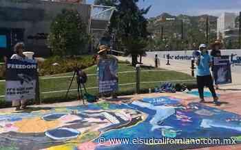 Activistas se manifiestan en el delfinario de Cabo San Lucas - El Sudcaliforniano