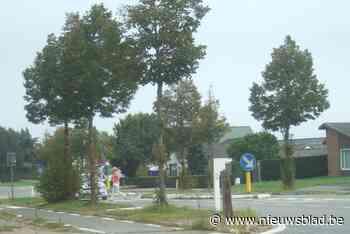 Lindebomen veroorzaken verkeershinder, wegbeheerder belooft vlugge aanpak