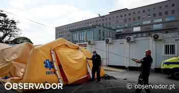 Centro Hospitalar do Porto instala laboratório com capacidade para 12 mil análises por dia - Observador