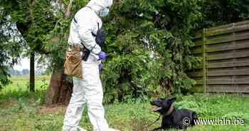 Eerste zedenhond van federale politie kan sperma lokaliseren - Het Laatste Nieuws