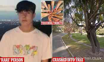 School friend's touching tribute to teenage boy, 18, who was killed in horror crash