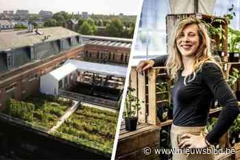 """Zwangere Sabine verkoopt enorme dakmoestuin: """"Opvolger moet natuur en stad blijven verbinden"""""""