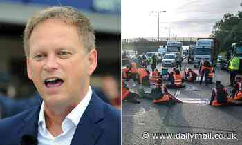 Government gets an INJUNCTION against M25 eco-anarchists