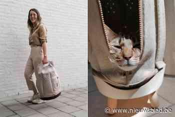 Een kat in de zak: studente uit Zoersel ontwerpt comfortabele tas om poes te vervoeren