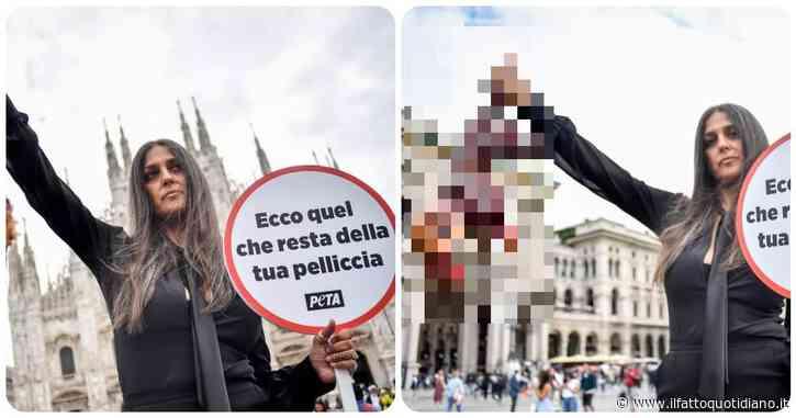 """Rosita Celentano protesta con una 'volpe scuoiata' in mano: """"Pellicce da cafoni, mi vergogno dell'Italia"""""""