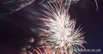 Saltwell Park fireworks won't go ahead in Gateshead this year, council confirm