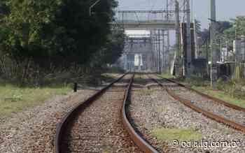 Trens do ramal Belford Roxo têm circulação parcialmente suspensa - O Dia