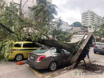 Tempo muda e ventania causa estragos no Rio; FOTOS - G1