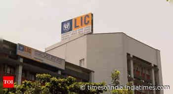 'Govt may let foreign investors buy up to 20% in LIC IPO'