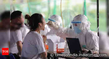 Coronavirus pandemic live update: WHO reports global decline in new Covid-19 cases - Times of India
