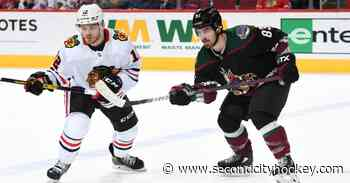 Chicago Blackhawks, NHL 2021-22 Central Division season preview: Arizona Coyotes team capsule, updates - Second City Hockey