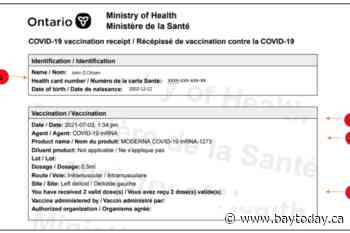 Going to the gym or out for dinner? Vaccine passports take effect today